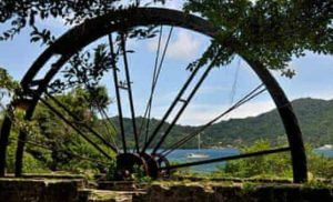 Water Wheel Tobago