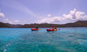 Two canoes paddling in St. John